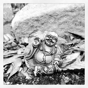 Buddha in the Garden by Dinorah Matias Melendez