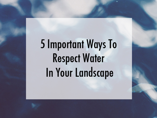 Water in your Landscape